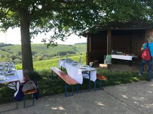 Weinreise Sommerach - Picknick im Weinberg